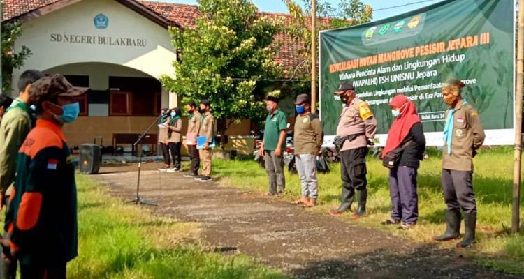 Wapalhi Kembali Revitalisasi Hutan Mangrove Pesisir Jepara